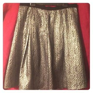 Silver and Black Skirt